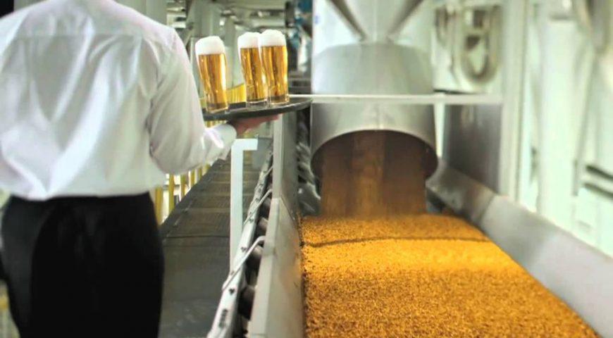 Производство и рынок солода